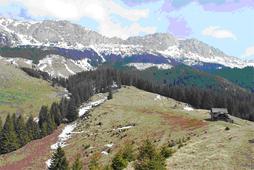 Poiana Gutanu , aflata in Masivul Bucegi, un loc de belvedere de unde